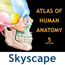 Netter Atlas Of Human Anatomy Online Netter U0027s Anatomy Atlas App Store Revenue U0026 Download Estimates Us