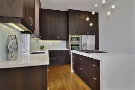 Modern Oak Kitchen Cabinets Modern Wood Cabinets Cool Modern Kitchen With Cherry Wood Cabinets