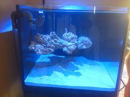 Aquascaping A Reef Tank Ode To My Wife 2 0 Floating Aquascape Sps Ats 600 Cube Reef