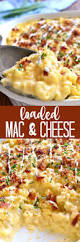 best 25 the best macaroni and cheese recipe ever ideas on