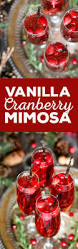 the 25 best cranberry juice cocktail ideas on pinterest