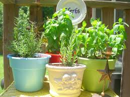 container garden ideas for any household martha stewart recycled
