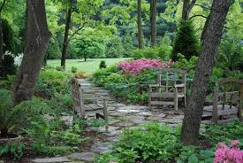 Shade Garden Ideas Chic Shady Backyard Landscaping Ideas 1000 Images About Charleston