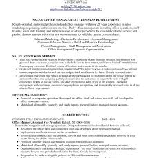 profile resume examples resume example and free resume maker