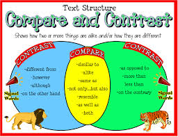 Comparative Essay Example Compare And Contrast Paragraph How To Compose A Perfect Essay