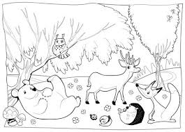 Forest Coloring Page Vitlt Com Woodland Animals Coloring Pages