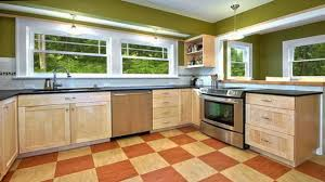Green Kitchen Design Ideas Eco Kitchen Design Ideas Video And Photos Madlonsbigbear Com