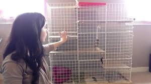Bunny Cages Make Your Own Rabbit Cage Youtube