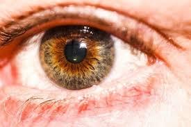 purple eye color my husband has purple brown hazel eyes i did not know of purple