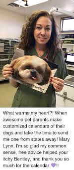 Customized Memes - eves bente what warms my heart when awesome pet parents make