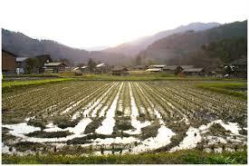2015 fall photo tour of japan kanazawa and shirakawago japan