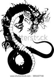 tribal dragon tattoo design illustration stock vector 565457746