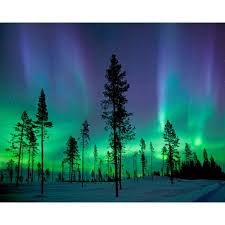 aurora borealis northern lights aurora borealis northern lights wall mural wr50512 the home depot