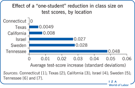 iza world of labor class size does it matter for student