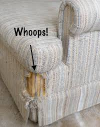 sofa that cats won t scratch how to keep cats from scratching furniture smart behaviorists have