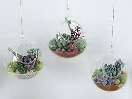 decor terrarium glass hanging terrarium hanging glass ball