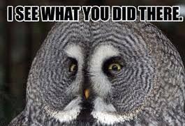 White Owl Meme - owl memes gallery ebaum s world