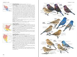which field guide cornell lab of ornithology birdsleuth k 12