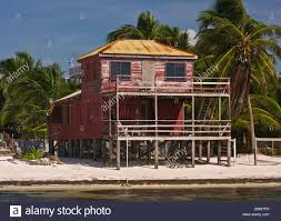 Small Beach House On Stilts Caye Caulker Belize Wooden House On Stilts On The Beach Stock