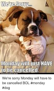 We Re Sorry Meme - were sorry monday will just have to be cancelled