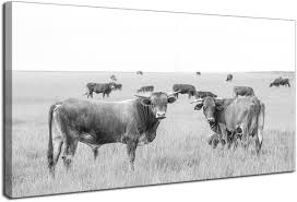 black and white prints for kitchen levvarts animal canvas wall cow picture black and white cattle in stowe vermont usa landscape photo painting prints modern home kitchen living