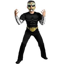 Wwe Halloween Costumes Adults Jeff Hardy Boys Party Costumes Mypartycentre
