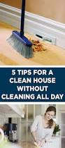 1968 best clean everything images on pinterest cleaning hacks