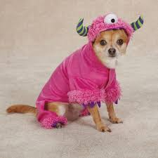 Cute Small Dog Halloween Costumes 112 Dog Images Puppies Animals