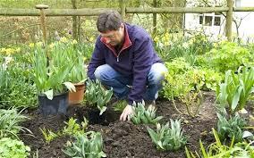 Gardening Zones - gardening zones wisconsin gardening supplies near me gardening