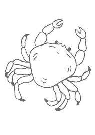 sea creatures coloring page animal crab coloring pages animal coloring pages of