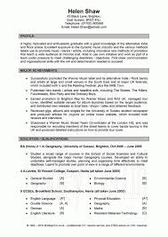 professional profile resume examples accounting