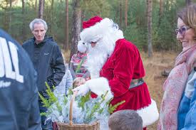 go ape real christmas trees and meeting father christmas in the