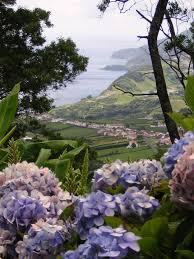 lilac jeep guided natural history tour of the azores unique azores holidays