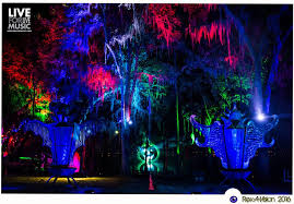 Spirit Of The Suwannee Christmas Lights Suwannee Hulaween Sets The Bar High For Festival Perfection