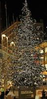 Christmas Tree Cataract Surgery by Beth Evans Ramos Blog Living A Greener Life