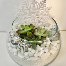 design your own snowflake hanging garden with plant nite raleigh