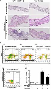 topical application of fingolimod perturbs cutaneous inflammation