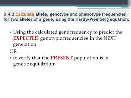 population genetics calculations worksheet answers the best and
