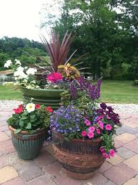 Inground Pool Landscaping Ideas Best 25 Landscaping Around Pool Ideas On Pinterest Plants