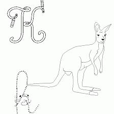 ã dessiner animaux kangourou