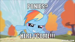 My Little Pony Meme Generator - pony memes gif images