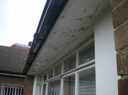 painting 3 bedroom house cost