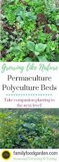 polyculture garden beds for permaculture gardening family food garden