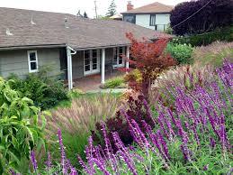 Gardens With Rocks by Garden Design Garden Design With Best Ornamental Grasses For