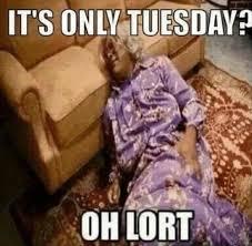 Happy Tuesday Meme - funny tuesday memes 17 pics funny memes daily lol pics