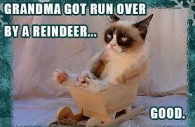 Grumpy Cat Memes Christmas - grumpy cat christmas meme grumpy cat pinterest grumpy cat
