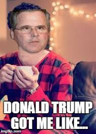 Pajama Boy Meme - watch trump absolutely faceplant jeb daily wire
