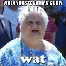 Nathan Meme - when you see nathan s ugly mug fat woman wat meme generator