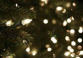 simple ideas white lights tree happy holidays