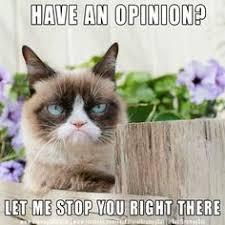 Frown Cat Meme - qiero mis chelas kiti pinterest sarcasm